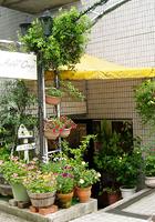 アトリエ・クープ クープ 美容室 名古屋市天白区